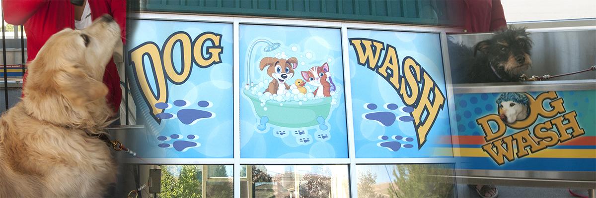 tahoe-blue-dog-wash